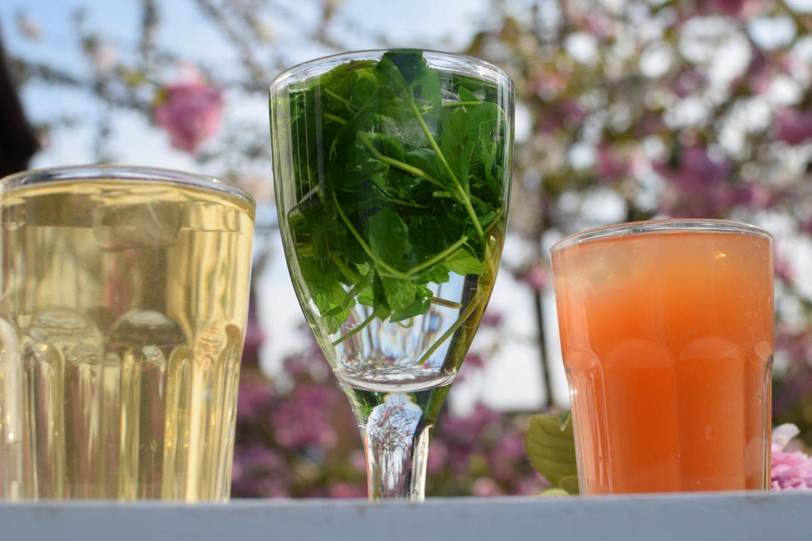 ELEVATE summer teas 3