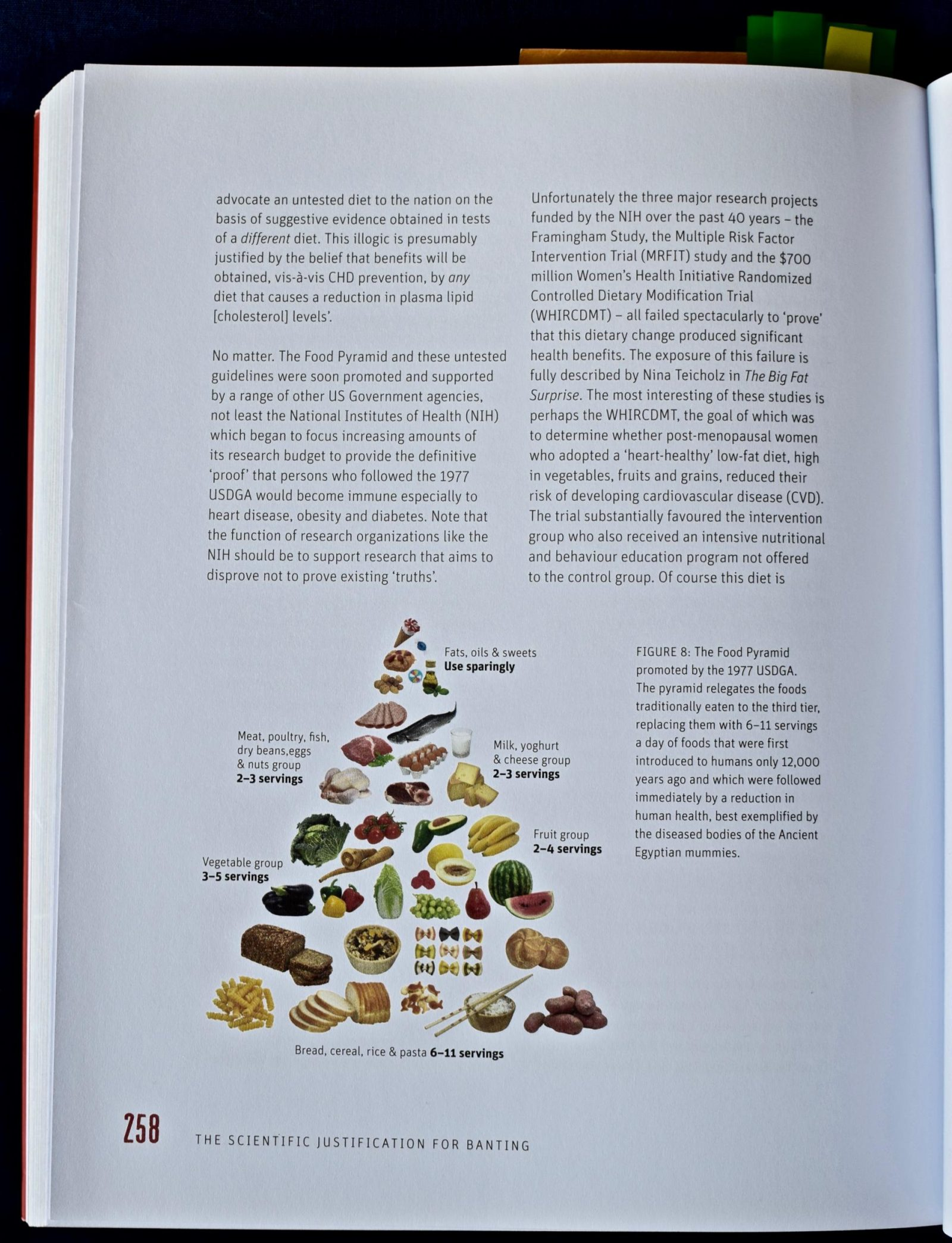 Real meal pyramid page